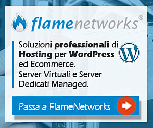 Hosting Flamenetworks